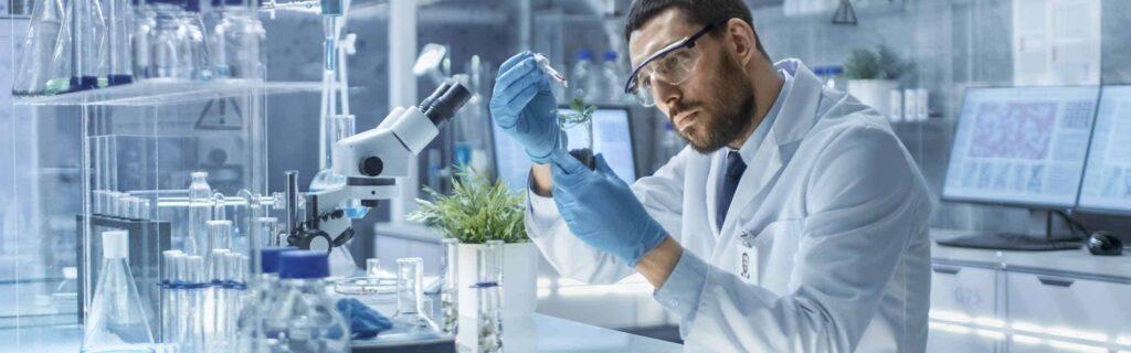 Descubre el papel importante del APPCC en la seguridad alimentaria