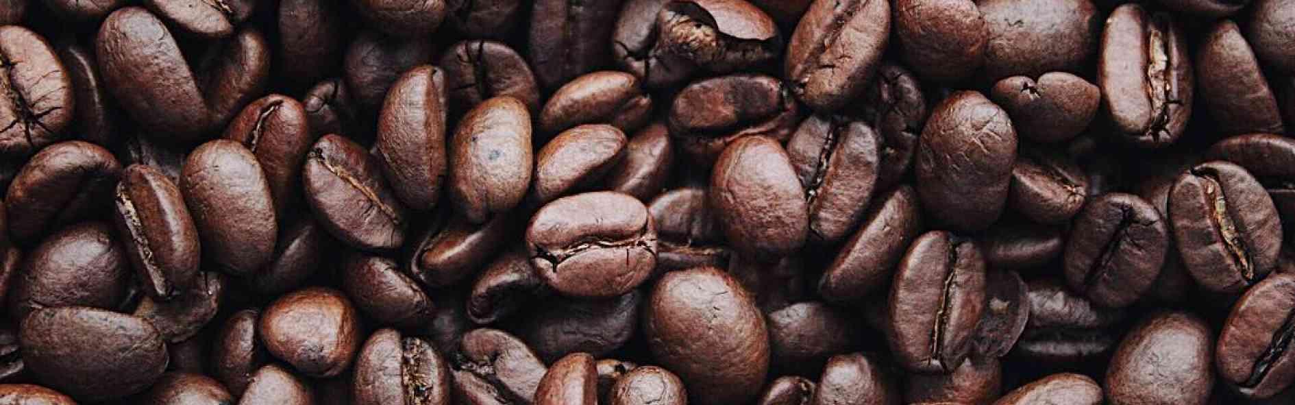 El origen del café y su cultivo
